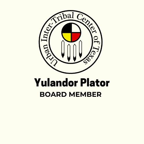 Yulandor Plator Logo no Email